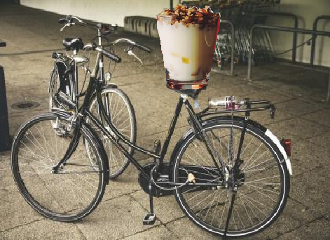 yogurt-biking